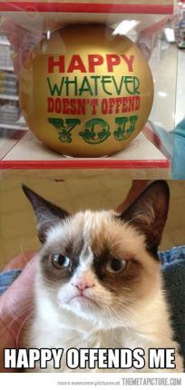 grumpy happy cat